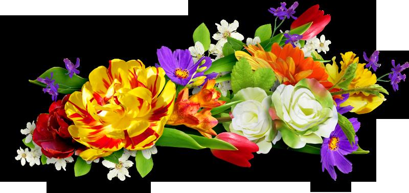 Гороскоп пересадки цветов
