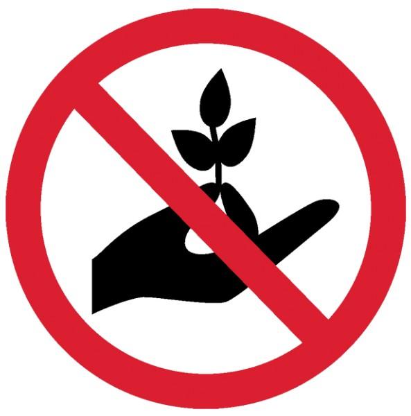Неблагоприятные днипосева и посадок, календарь огородника и садовода май 2020, цветовода