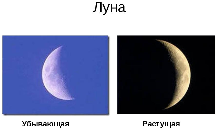 Как узнать, какая сейчас фаза Луны, растущая или убывающая?