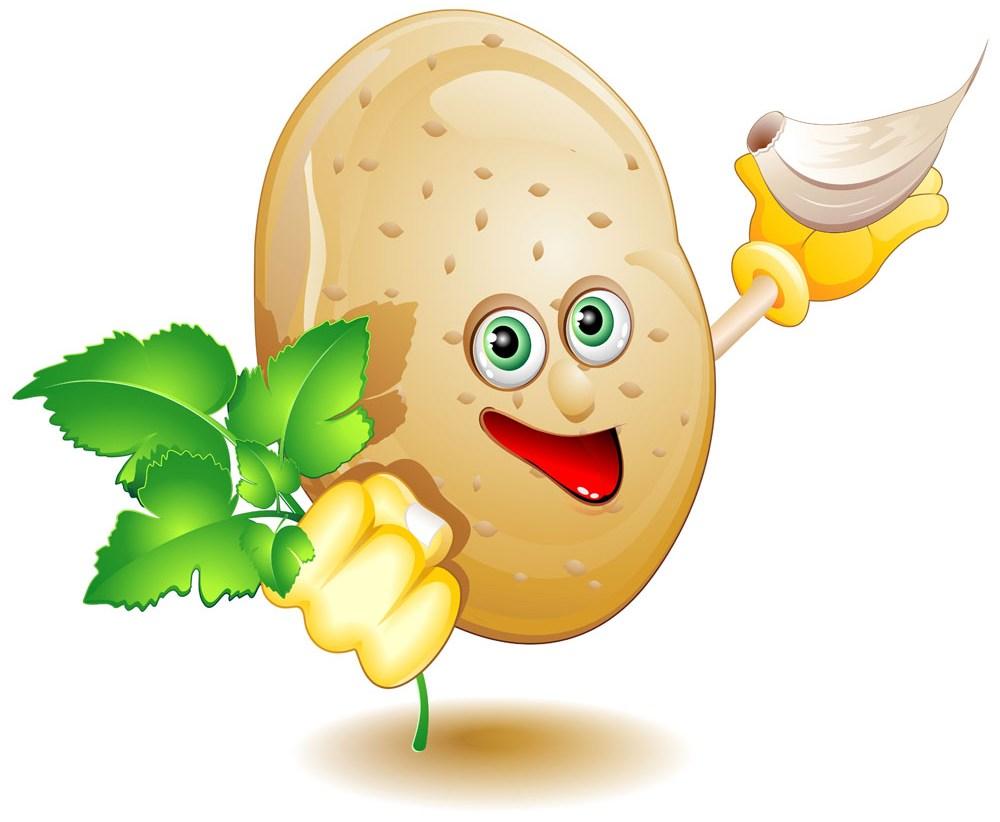 называют эмблема картошка в картинках долгое время никого