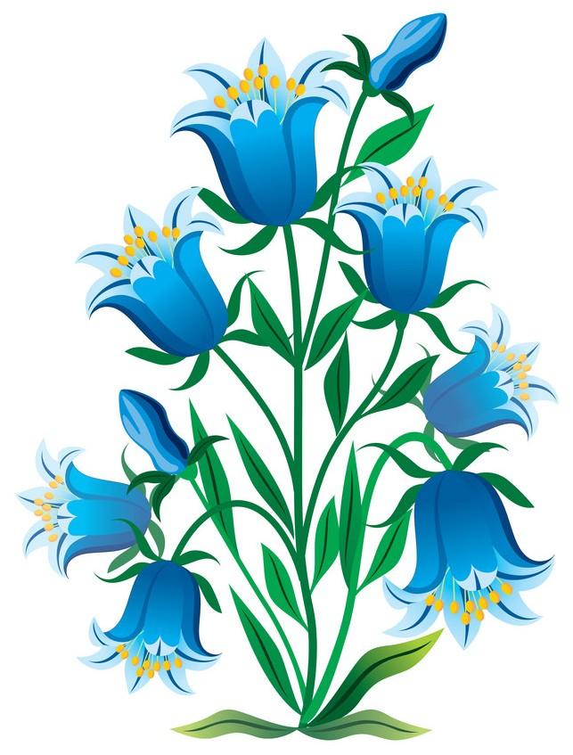 веко красивые рисунки колокольчиков не цветов что комету принцессу