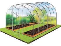 Посев семян чеснока 2020, уход за чесноком, лунный календарь