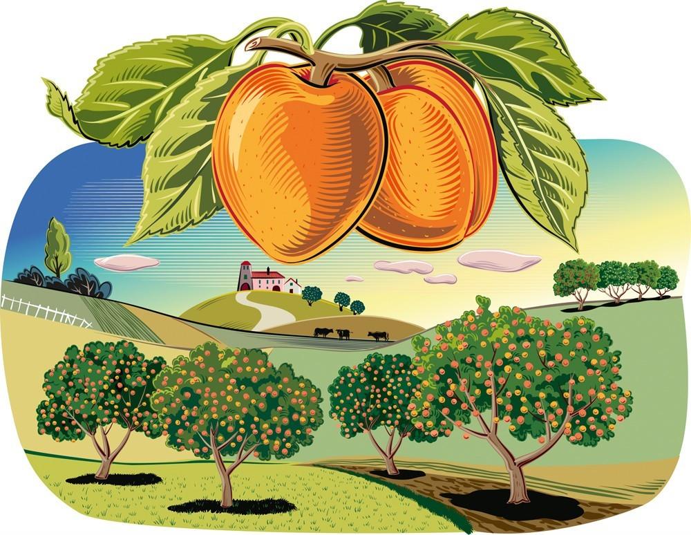 Высадка деревьев в марте 2019 высаживание садовых и плодовых
